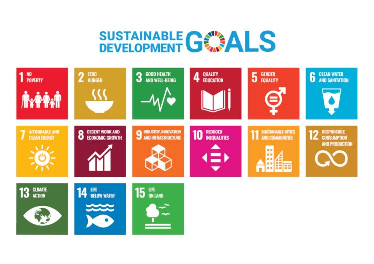 The 15 sustainable development goals Renaissance Sri Lanka works for